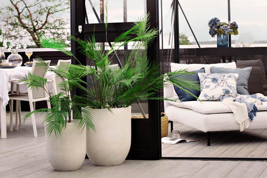 Hvite potter med planter i