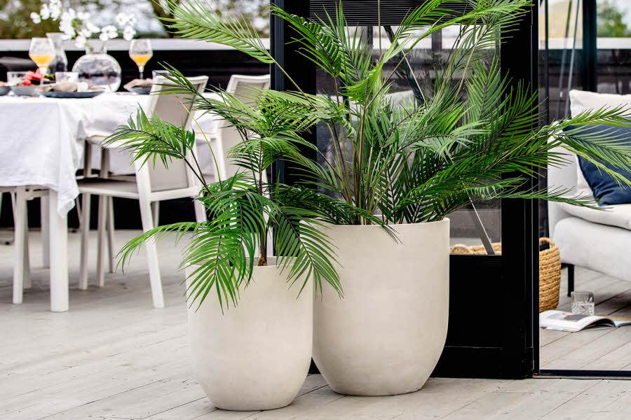 Potter med planter i står ute
