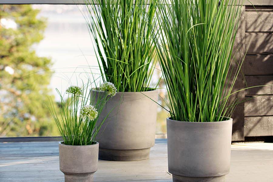Potter i ulike størrelser med planter i